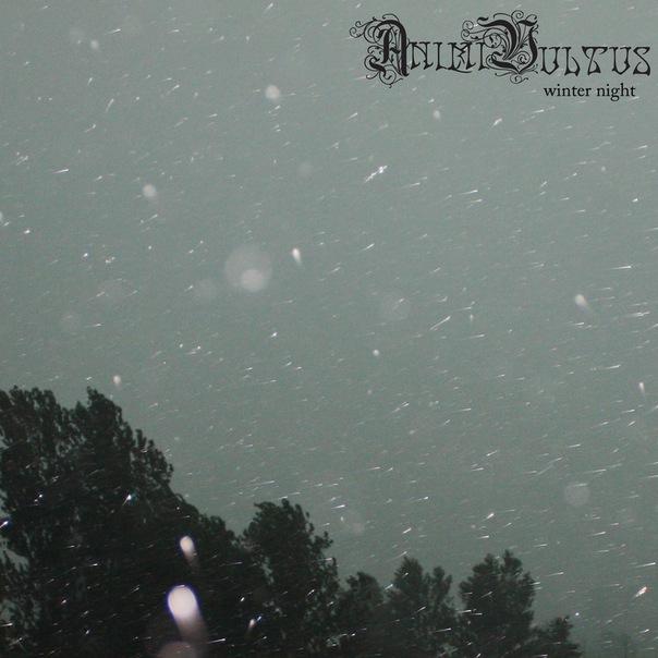 http://files.mastersland.com/files/foto2/AnimiVultus-2011-WinterNight.jpg