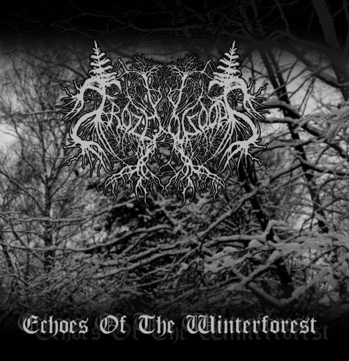 Вышел дебютный альбом FROZENWOODS - Echoes Of The Winterforest (2012)
