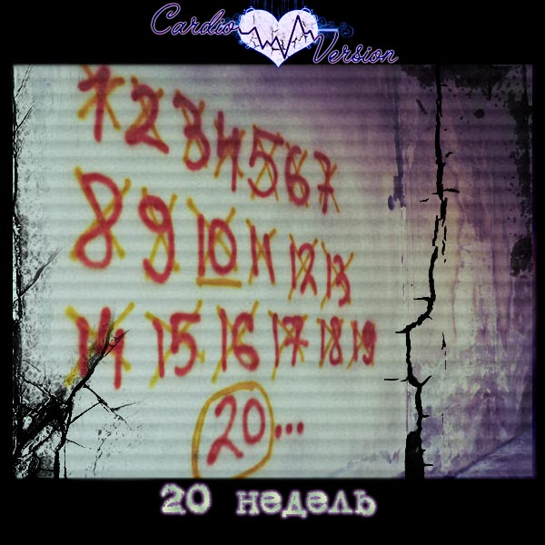 CARDIO VERSION - 20 недель (EP 2011)