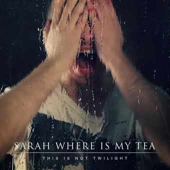 Новый сингл SARAH WHERE IS MY TEA - This Is Not Twilight
